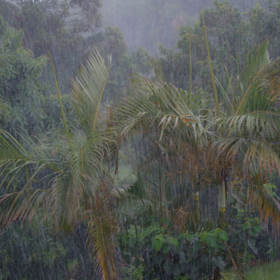Heavy monsoon rainfall